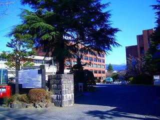 日本大学 国際関係学部